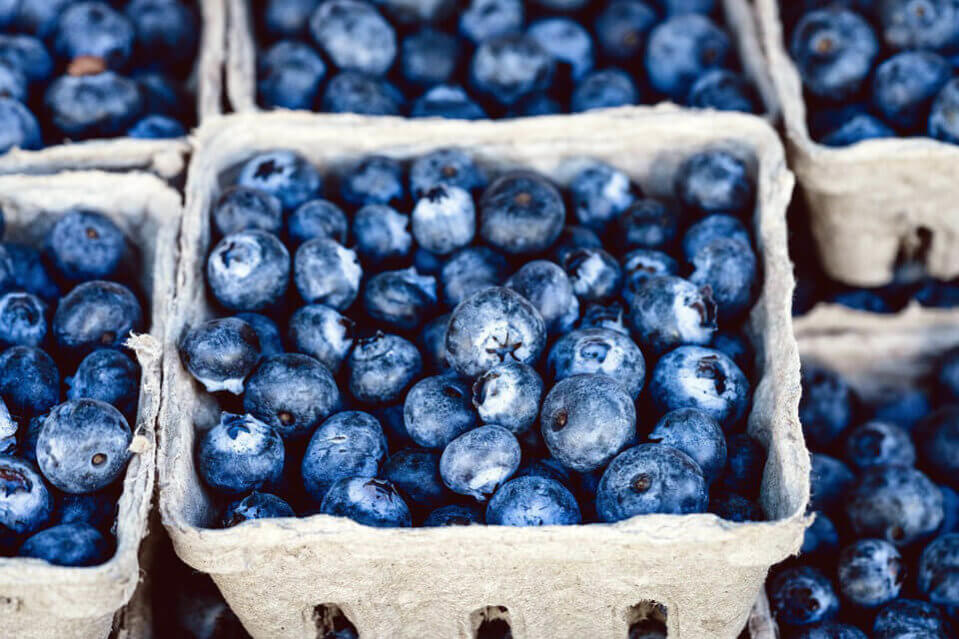 snacks-blueberry-going-on-a-long-haul-what-to-take-suppose-u-drive